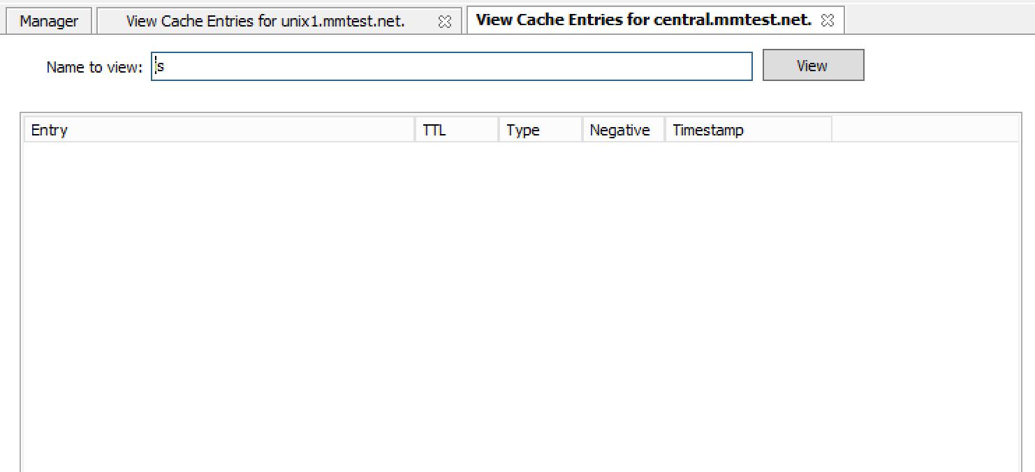 ../../../_images/console-dns-cache-entries-1.png
