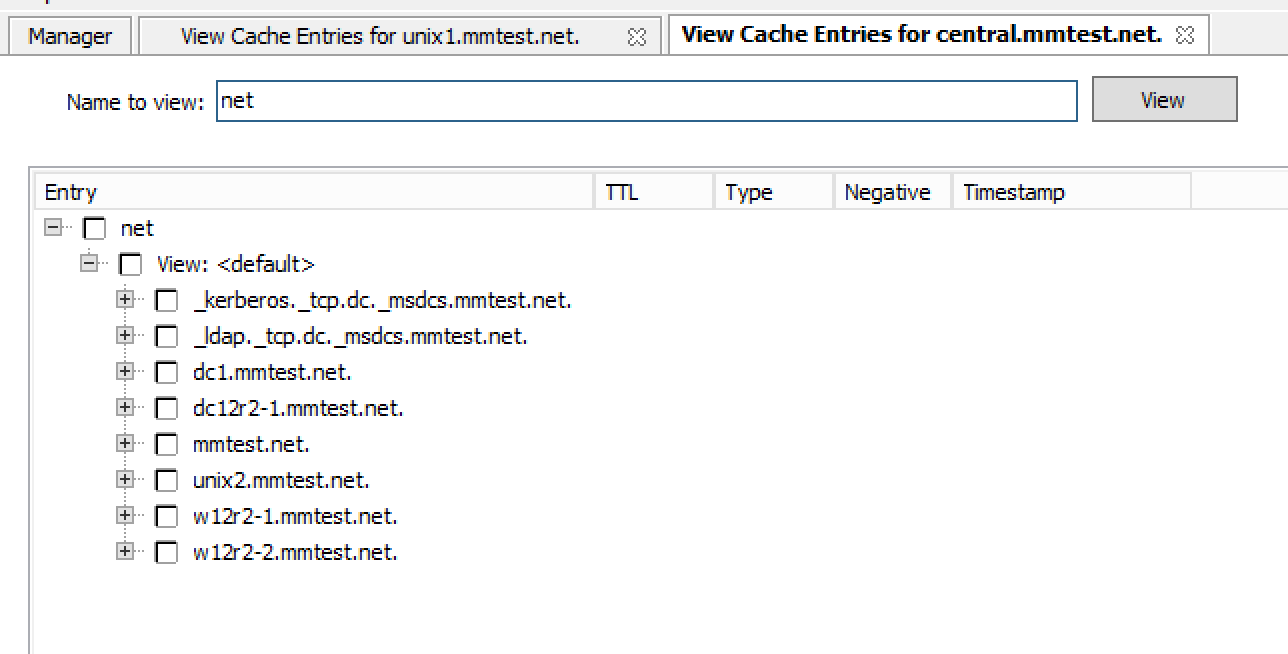 ../../../_images/console-dns-cache-entries-2.png