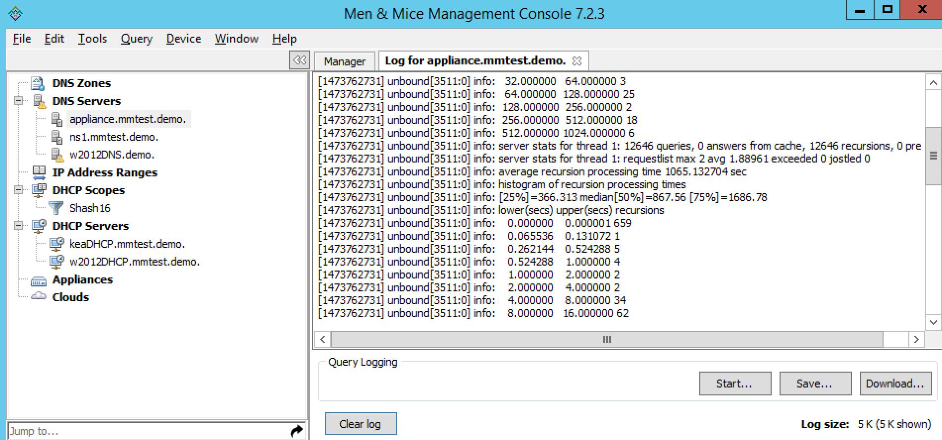 ../../../_images/console-dns-server-log.png
