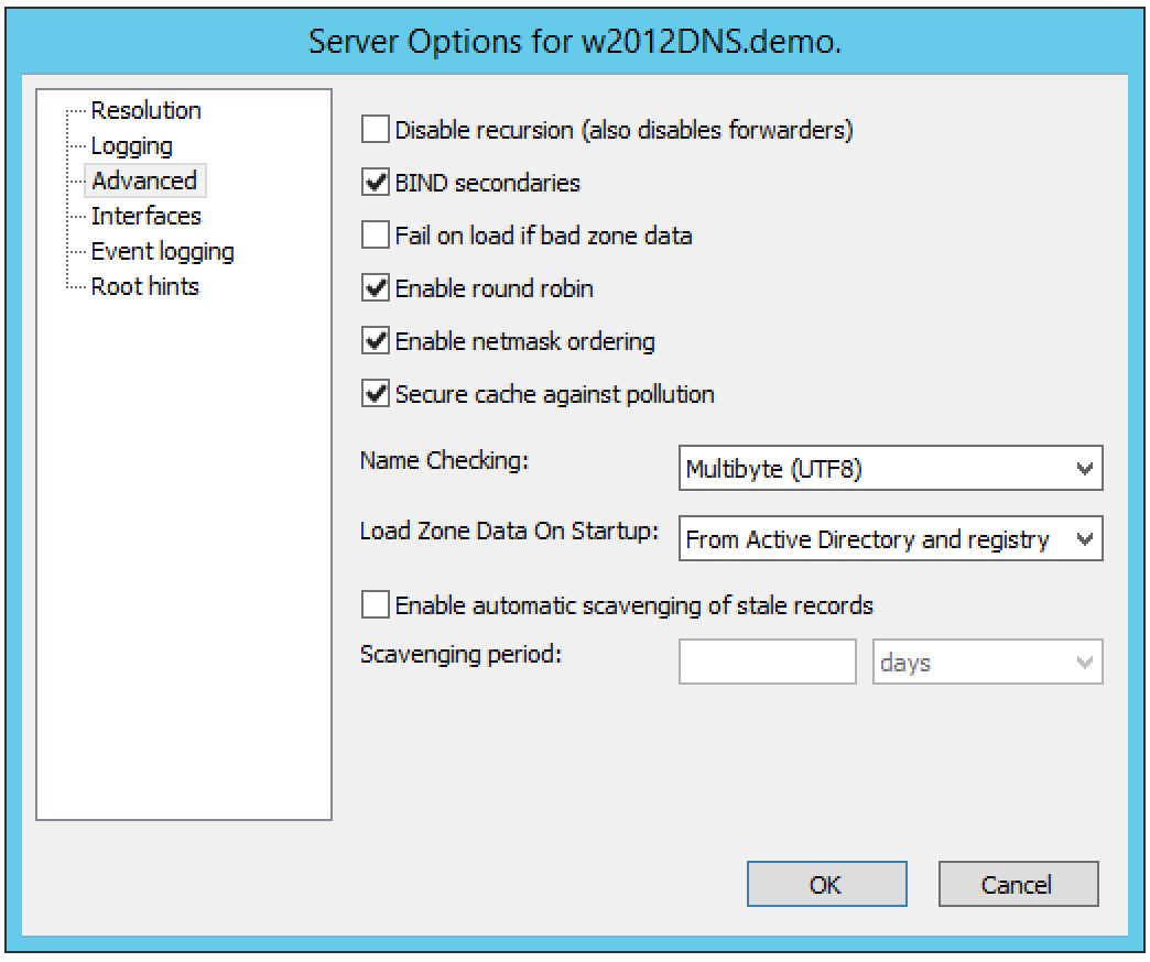 ../../../_images/console-dns-windows-dns-options-advanced.png