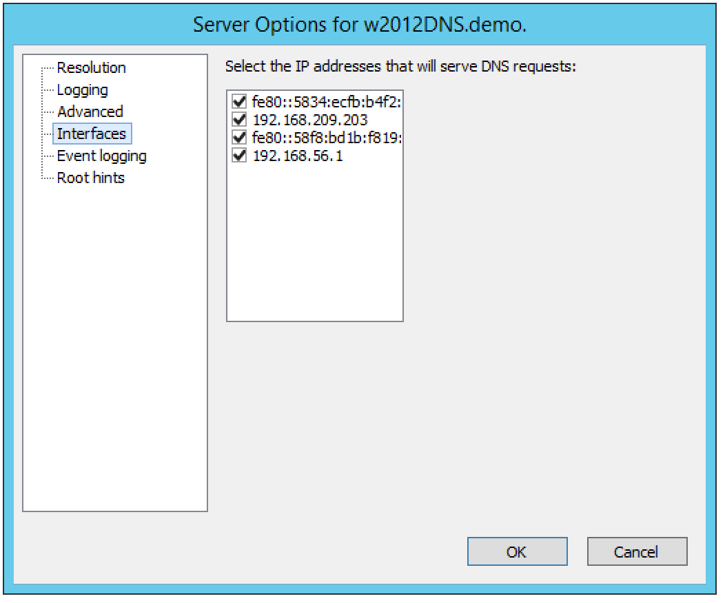 ../../../_images/console-dns-windows-dns-options-interfaces.png