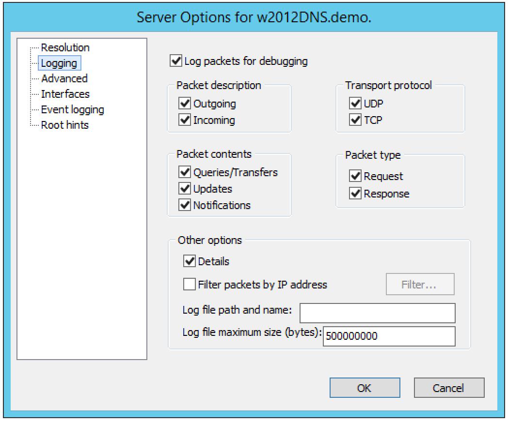 ../../../_images/console-dns-windows-dns-options-logging.png